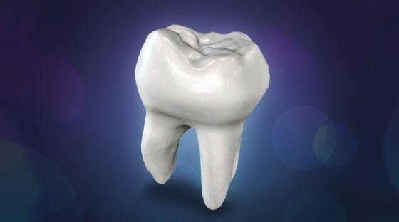 dentes-top
